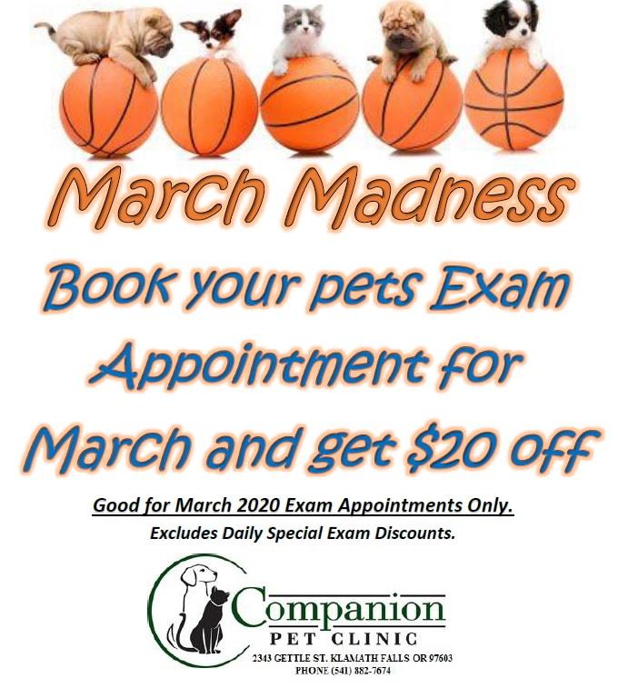 Book you exam in for March and SAVE!